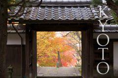 穴場でゆっくりもみじ狩り!紅葉がきれいな京都の名所