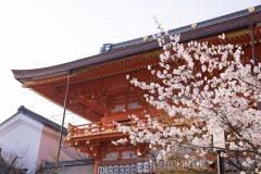 京都好き必見!京都検定って?